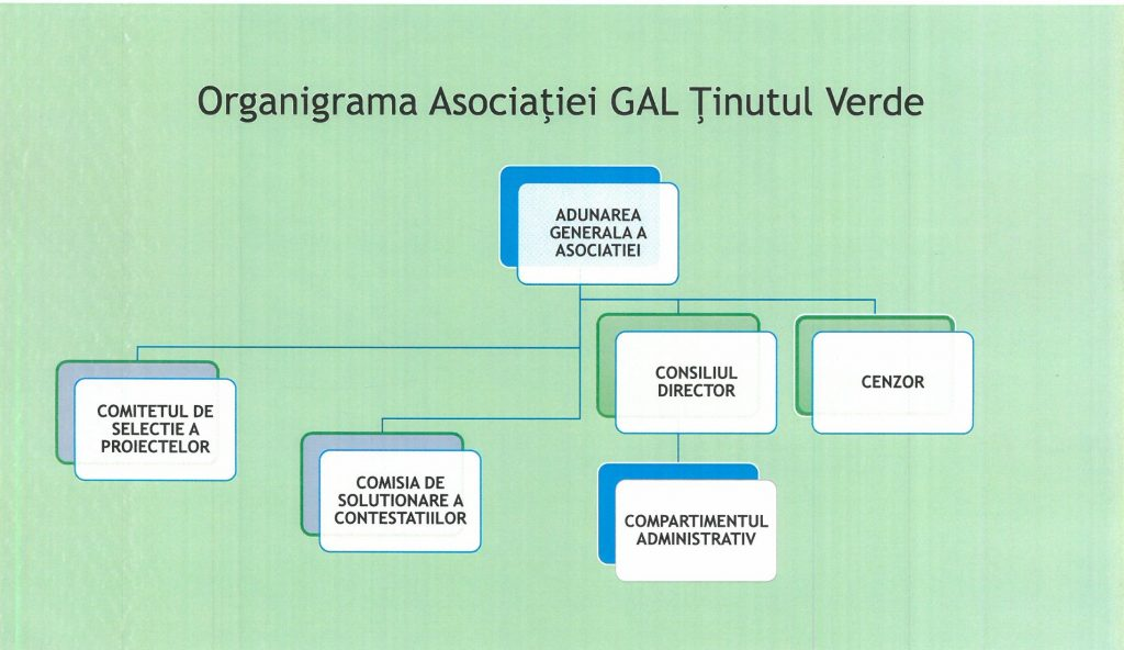organigrama-asociatiei-gal-tinutul-verde
