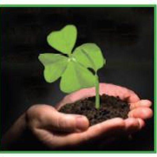 Asociația GAL Ținutul Verde